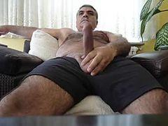 Turkish Bear