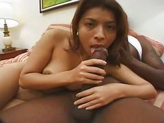 Sofia Petite Latina 2