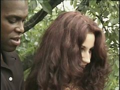 Melody Kord, Lexington Steele, Vince Vouyer