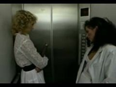 Elevator Lesbians